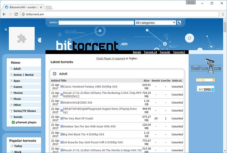 BitTorrent.am - Popular Torrent Search Site | TorrentNote